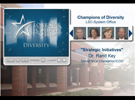 Diversity Champions picture